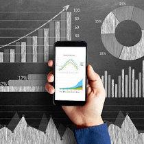Carrera en economía en línea
