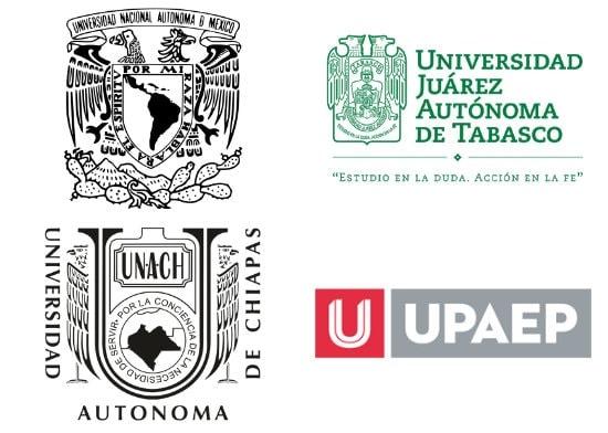 Universidades en línea en trabajo social